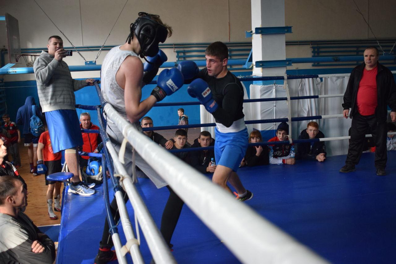Что лучше бокс или борьба: особенности и преимущества бокса, особенности борьбы