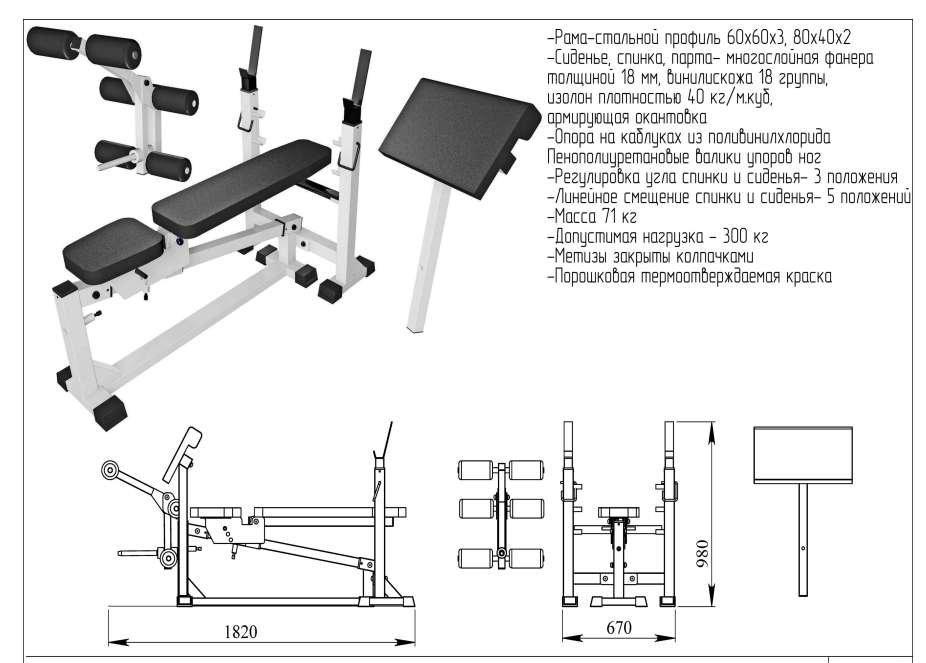 Упражнения на скамье для пресса: как правильно заниматься и какую лавку выбрать для дома