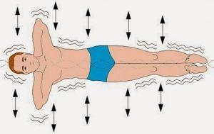 Упражнение на восстановление позвоночника «золотая рыбка»