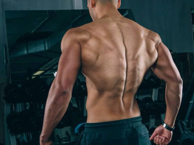 Как накачать широчайшие мышцы спины— упражнения для дома
