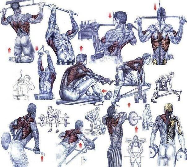 Упражнения на стуле для похудения живота и боков, на работе: фото, видео