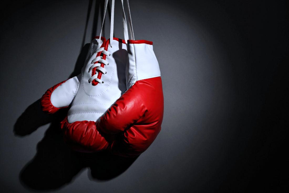 9 лучших производителей боксерских перчаток - рейтинг 2020