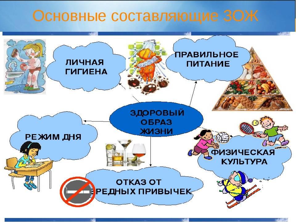 Реферат: здоровый образ жизни и его составляющие - bestreferat.ru