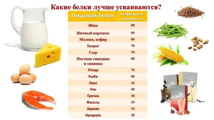 Сколько граммов белка усваивается за один прием пищи?
