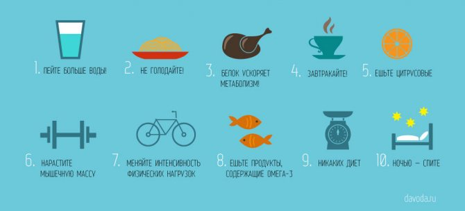 Как восстановить обмен веществ (метаболизм) в организме? | irksportmol.ru