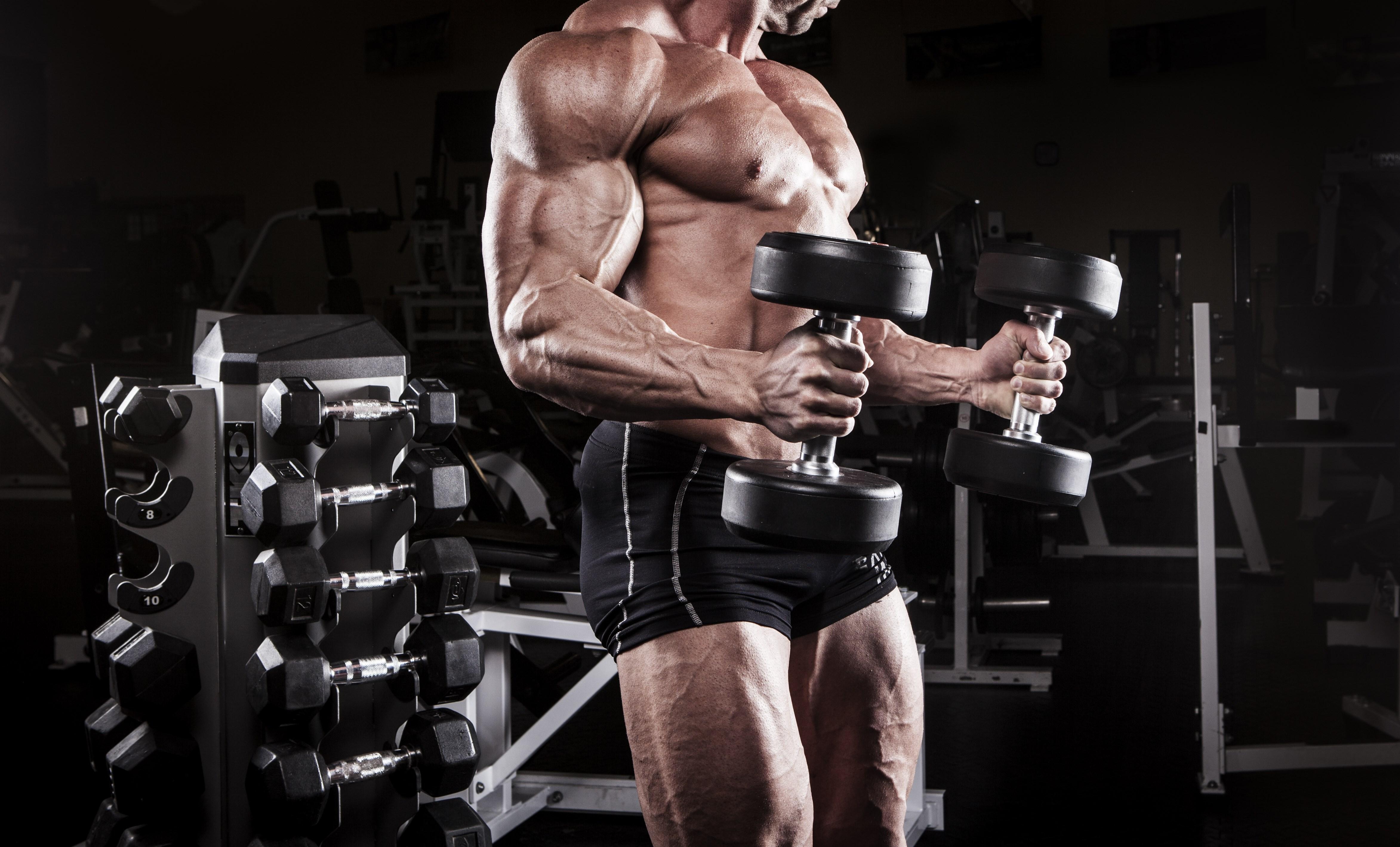 Бодибилдинг - современный силовой спорт | бодибилдинг и фитнес программы тренировок, как накачать мышцы, сбросить лишний вес