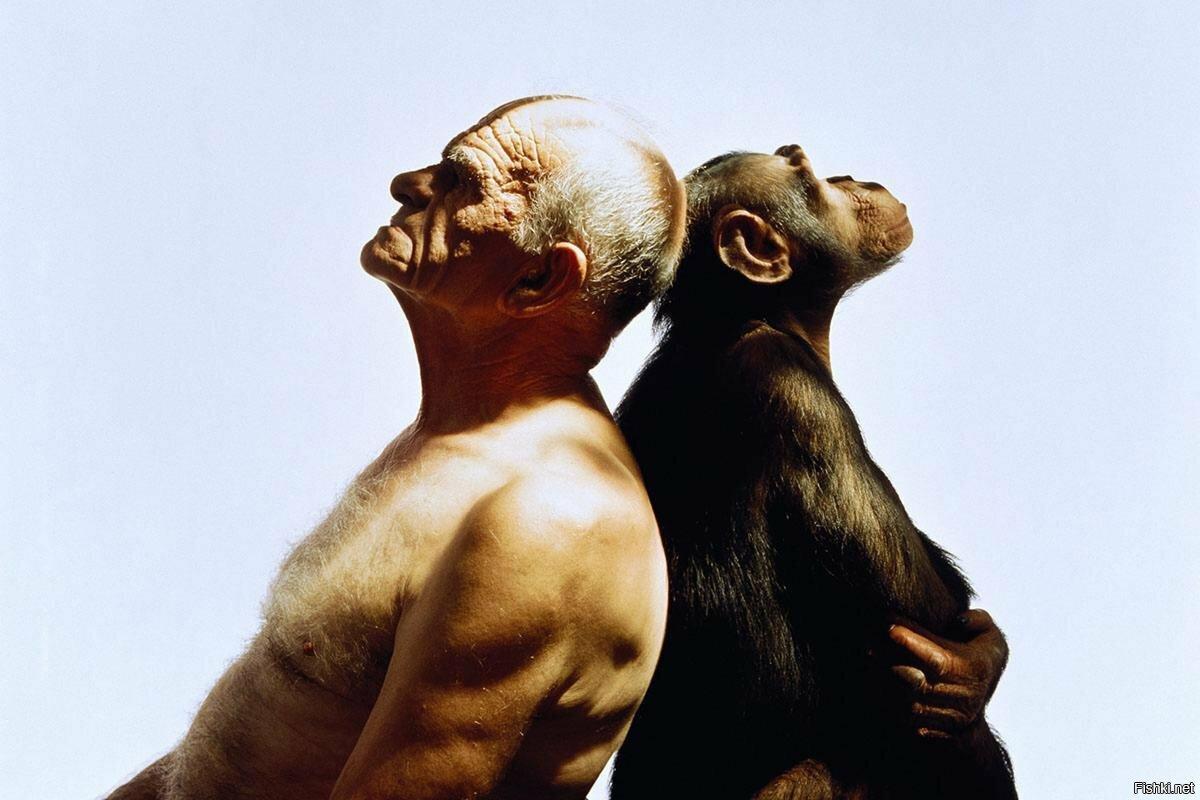 Инстинкт у человека, животных и насекомых - особенности его проявления
