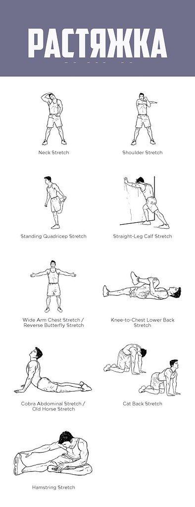 Упражнения для растяжки всего тела и развития гибкости