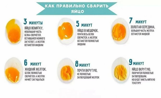 Яичный белок — польза и вред для организма мужчины и женщины. полезные свойства и противопоказания