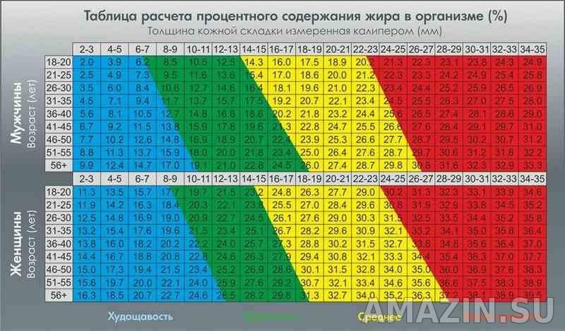 Процент жира в организме: нормы для мужчин и женщин - tony.ru