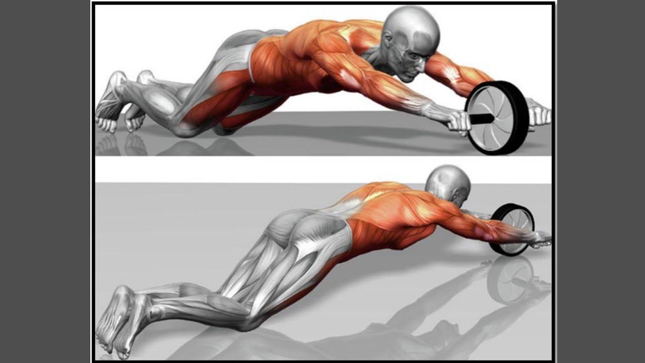 Комплексные упражнения с роликом для твердого пресса