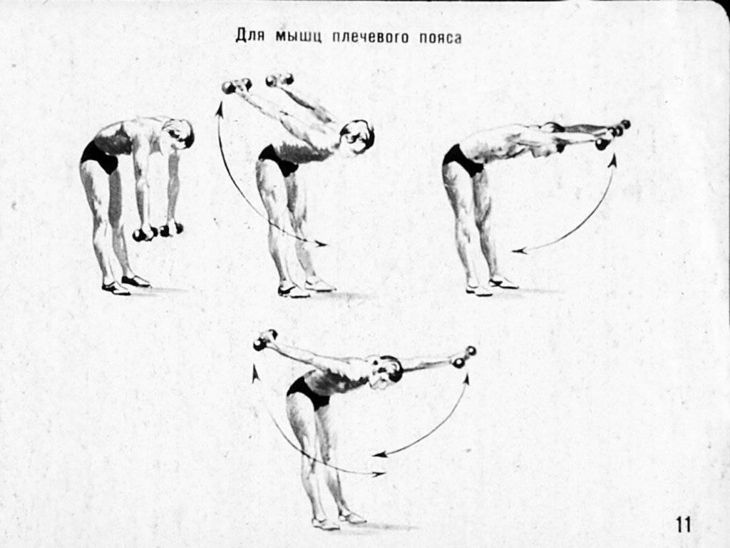 Упражнения с гантелями для мужчин и женщин