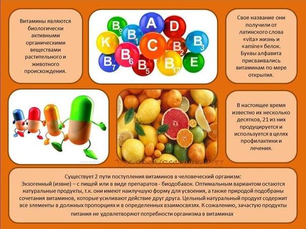 Самые важные витамины для организма человека