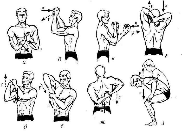 Что такое изометрическая гимнастика: упражнения, видео