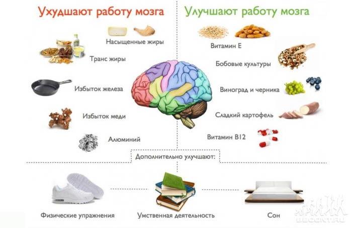 Продукты для улучшения памяти и работы мозга