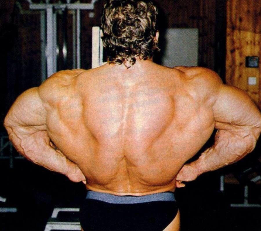 Как сделать плечи шире
