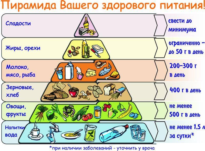 Правильный рацион с помощью пирамиды питания - диета | доброхаб