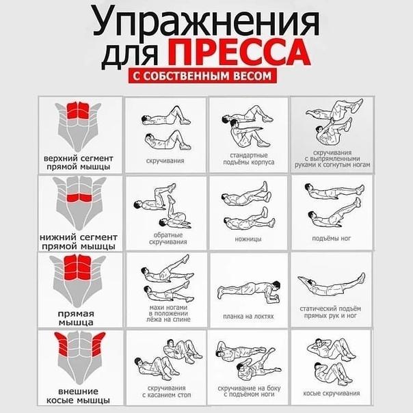 Упражнения с собственным весом на все группы мышц в домашних условиях быстро