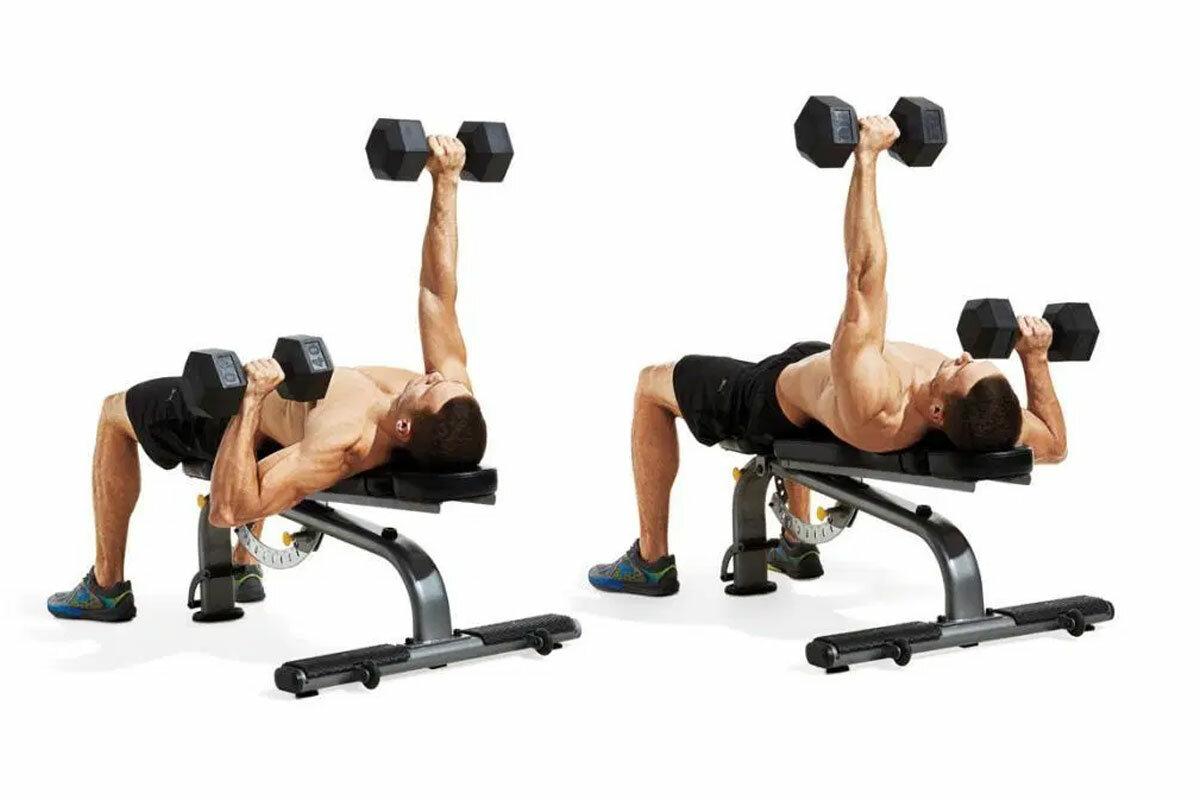 Упражнения на грудь с гантелями — как быстро накачать грудные мышцы?