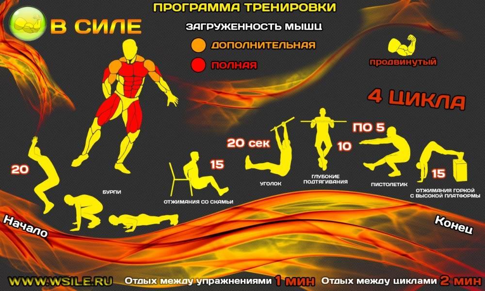 Подтягивания: как научиться подтягиваться с нуля, упражнения и советы (фото)