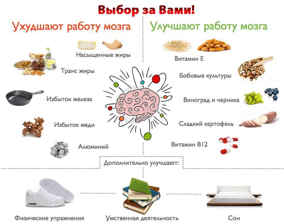 Правильное питание для мозга и улучшения работы нервной системы — 7 правил