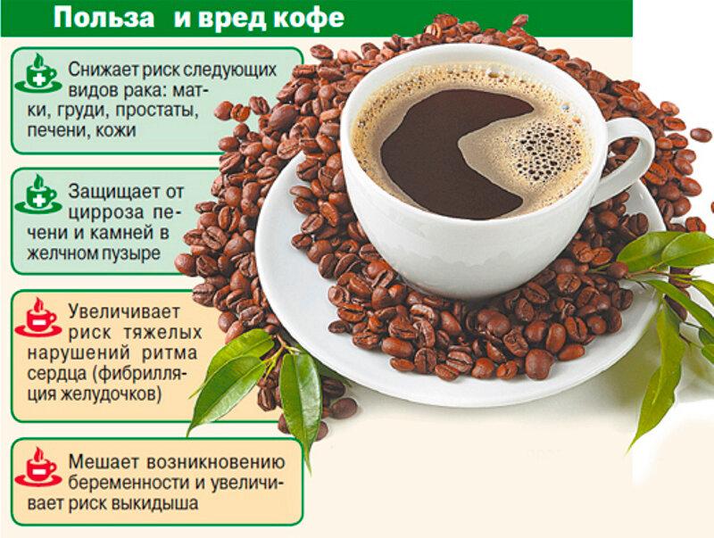 Зеленый чай: научные факты о пользе и вреде напитка