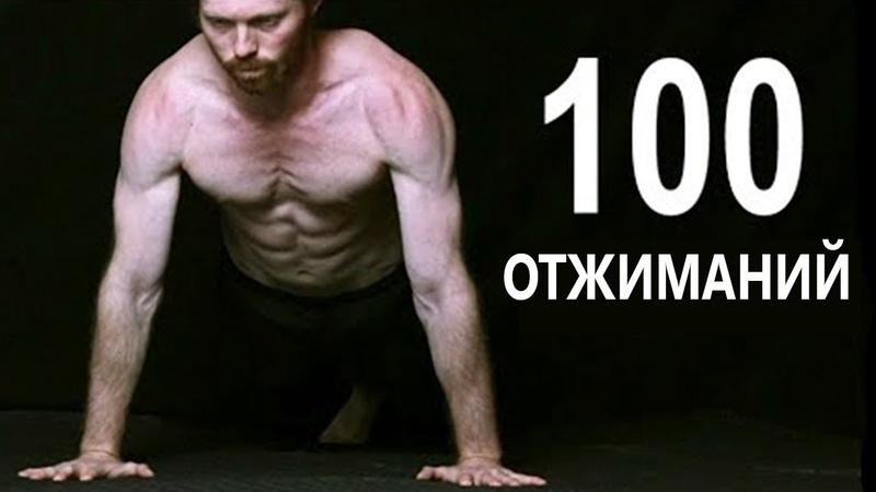 Программа отжиманий —тренировка для начинающих. схема с нуля до 100