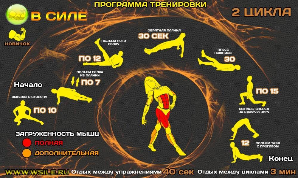 Кроссфит для девушек: упражнения и программа тренировок