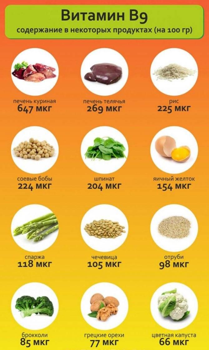 Топ 12 продуктов богатых витамином b12