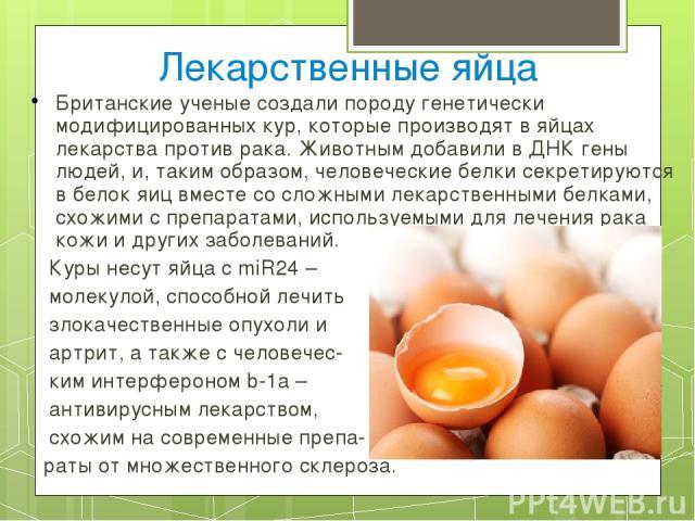 От чего зависит цвет скорлупы и желтка куриного яйца: разбираем причины и влияющие факторы