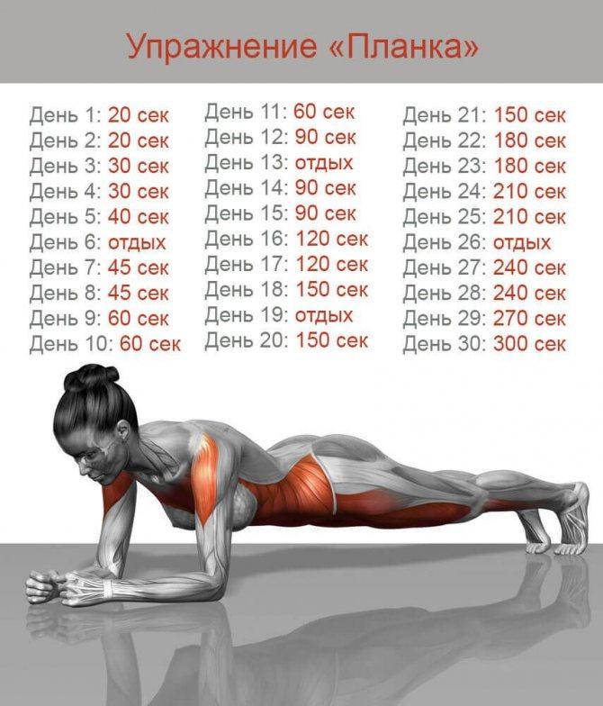 Делать планку до еды или после еды. когда лучше делать упражнение планку: утром или вечером | фитнес для похудения