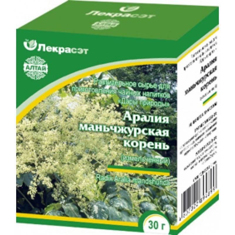 Польза, лечебные свойства и противопоказания к употреблению аралии маньчжурской