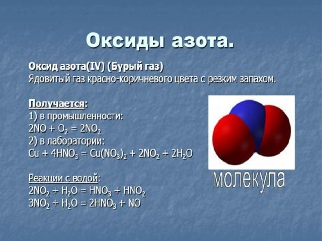 Оксид азота в бодибилдинге – инструкция по применению