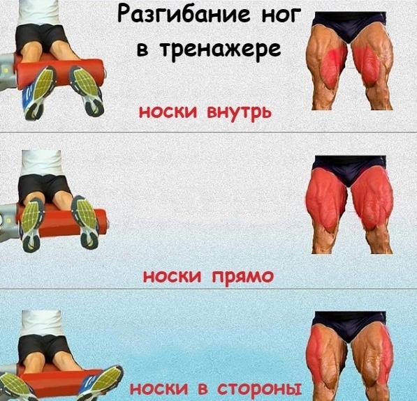 Как накачивать мышцы ног мужчине в домашних условиях