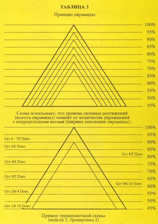 Азбука мышечной массы | свежий взгляд на принципы вейдера. часть 1 | bestbodyblog.com