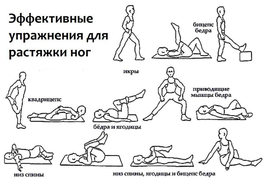 Растяжка после силовой тренировки | как правильно выполнять