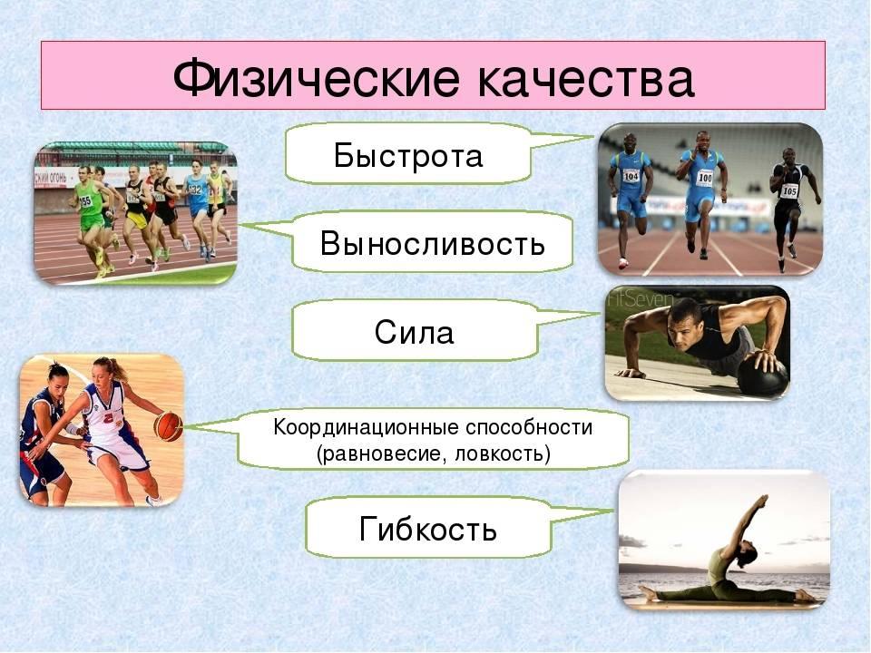 Упражнения на развитие ловкости: комплекс, особенности и рекомендации