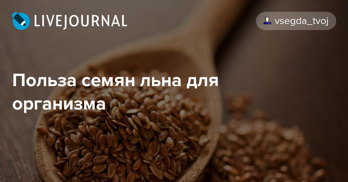 Семена льна польза и вред. применение семени льна в народной медицине  | народные знания от кравченко анатолия