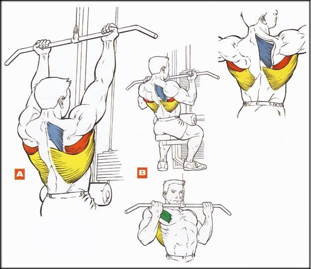Вертикальная тяга обратным хватом