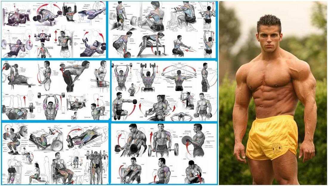 Программа тренировок в тренажерном зале для мужчин