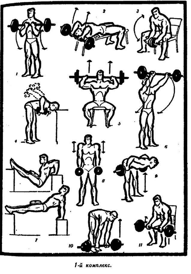 Зарядка: комплекс утренней гимнастики, польза упражнений для похудения и рекомендации к занятиям