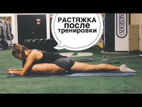 Растяжка после тренировки: упражнения для всех частей тела