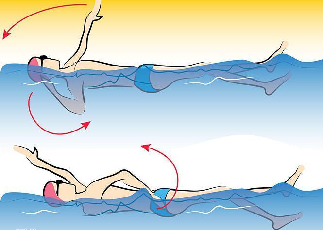 Как научиться правильно плавать кролем взрослому человеку самостоятельно: техника