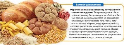 Перерабатываются ли углеводы в жир