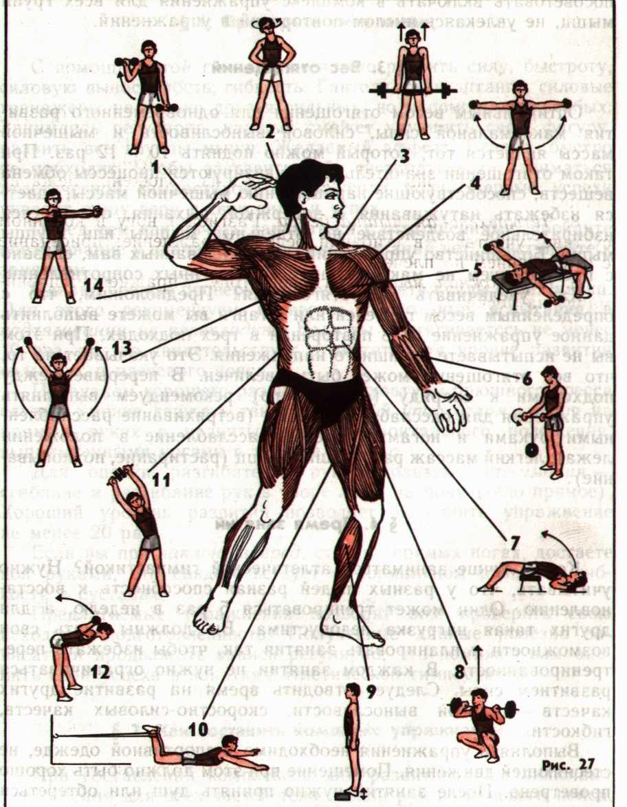 Комплекс упражнений с пружинным эспандером