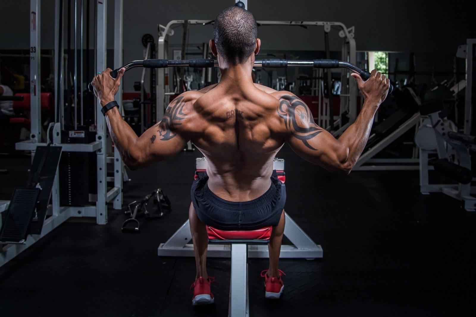 Упражнения на спину в тренажерном зале и дома, в том числе с гантелями и штангой, комплекс для укрепления мышц для девушек и мужчин