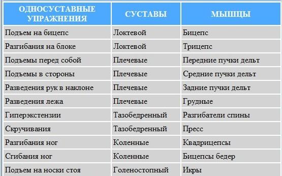 Изолирующие упражнения: список на все мышцы для дома и зала