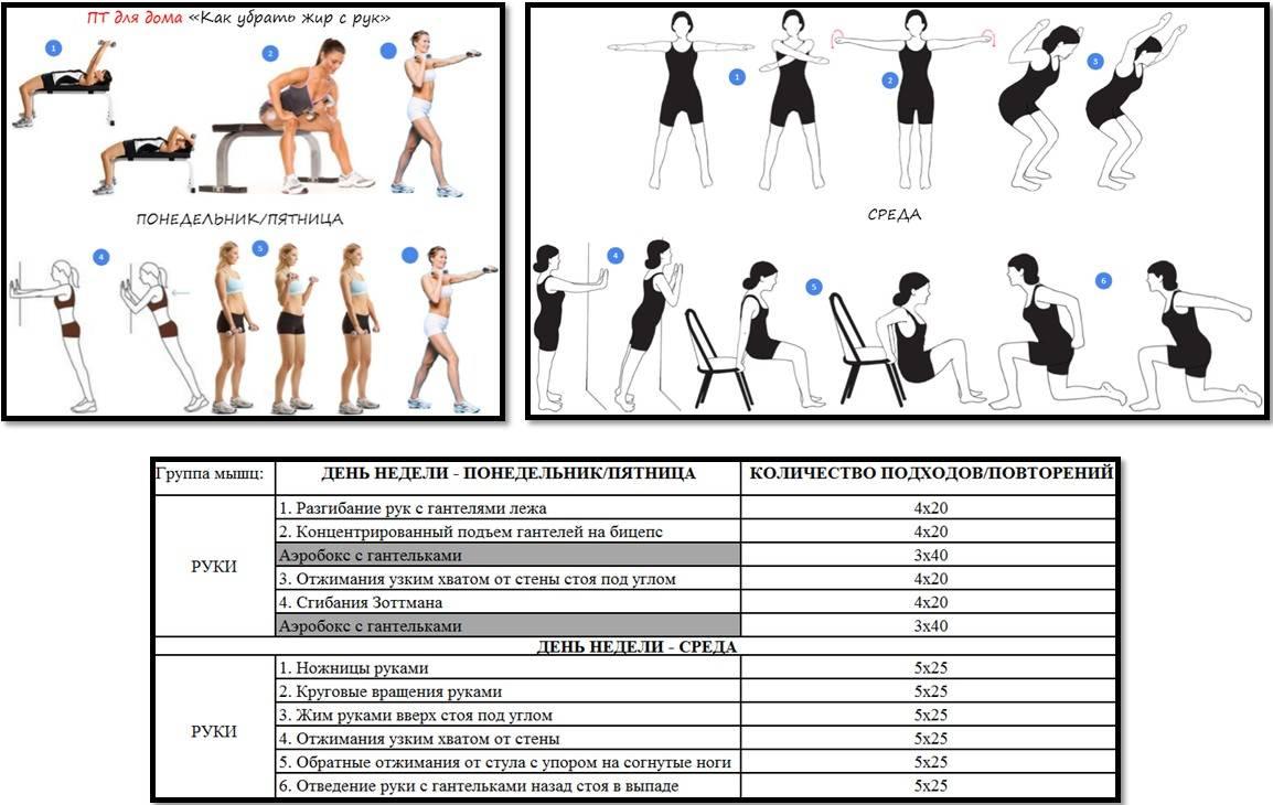 Упражнения для мышц рук: 20 лучших упражнений для прокачки мышц рук
