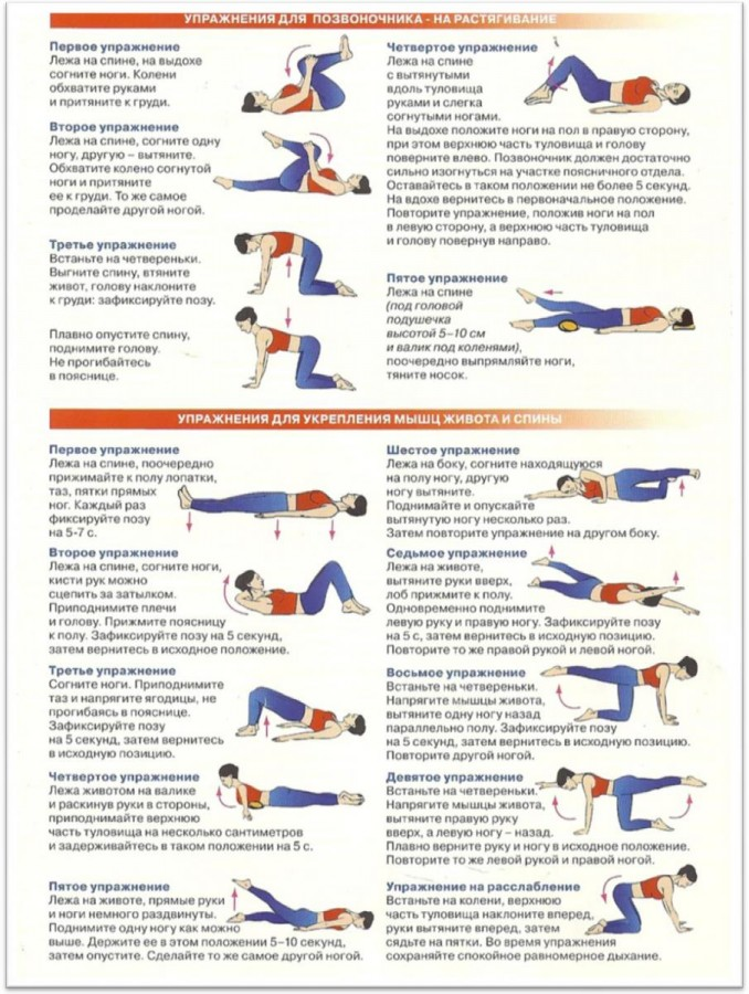 Как укрепить мышцы спины в домашних условиях