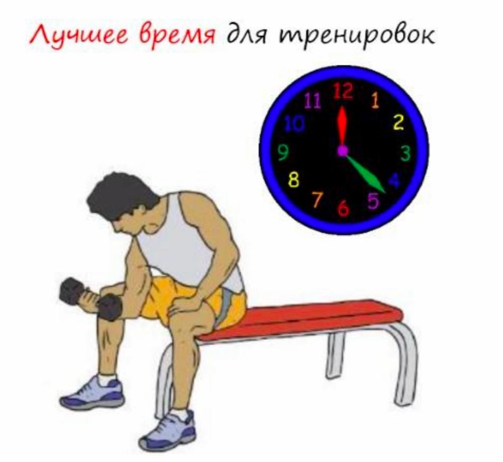 Выбираем время для тренировок - когда лучше тренироваться